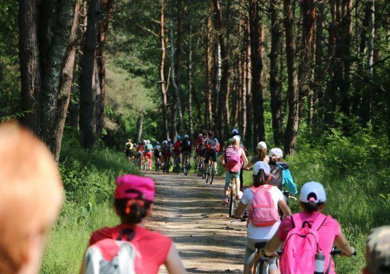 Sziágyi Erdészeti Erdei Iskola, Rinyabesenyő